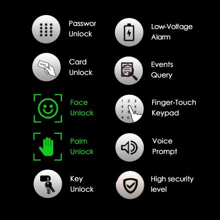 Biometric Fingerprint Front Door Lock Access Entry System With Finger Touch Keypad