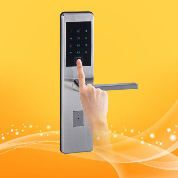 Professional Biometric Fingerprint Access Entry System Door Lock For